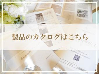 【サロネーゼシステム】 メール配信システム カタログのご紹介